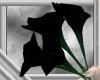 Black Lilies