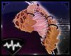 [SF] Kitt - Ears