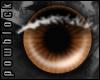 POW Brown Eyes