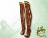 Autumn boots V2