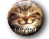 ~Oo I Farted Kitten