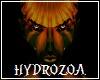 Hydrozoa Skin