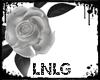 L:Rose Gothic-White