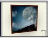 (AN) Moonlight Clouds
