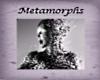 Metamorphs Tome