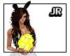 ![JR] Yellow Roses