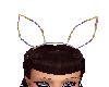 bunny wire ears