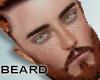 Beard, Reddish Brown
