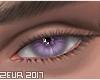 Skylight Purple