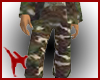 American Soldier Shorts