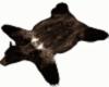 Brown bear rug cc