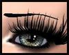 Eyelashes F