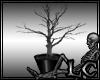 ~Le Dead Plant
