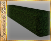 I~Lakeside Hedge