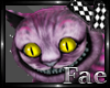 Derivable Cheshire Cat