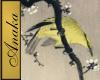 Oriental Yellow Bird