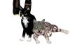 L]friends cats seu pet M