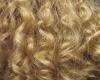 sp83-Blonde bun