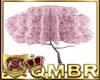 QMBR Cherry Blossom w Pz