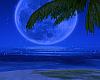 MoonLight Island Beach