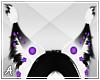 A| Xava Ears 3
