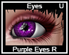 Purple Eyes Right
