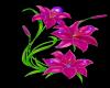 PurpleFlower.