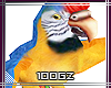  GZ  anim, parrot