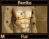 Perrito Fur M