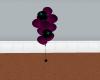 *WT* Purple Surprise