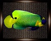 Unda The Sea Fish v1