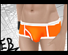 $EB shortsss / orange