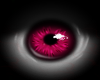 Sexy Lady Eye