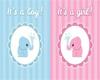 boy or girl (girl)