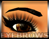 Best Eyebrows
