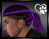 Purple Lorenzo