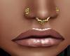 Gold Septum /Nose Studs