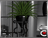 Sympatico Plant I