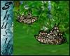 """Flying Butterfly""Tigre"