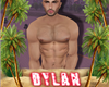 DYLAN HOUSE PHOTO