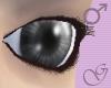 Beneficium Eyes Grey M