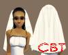 (C)Elegant Wedding Veil