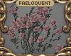 F:~Balcony Wall Roses