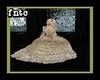 *F* Victorian Dress