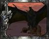 *C*Western Dragon Fawn