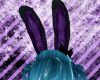 Bunny ears purple