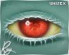 Red/Yellow Eye