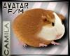 DER! Hamster Avatar F/M