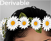 -V- Daisies Crown