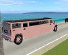 A19~Pink Coral Limo